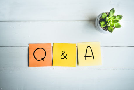LION Publishers Q&A